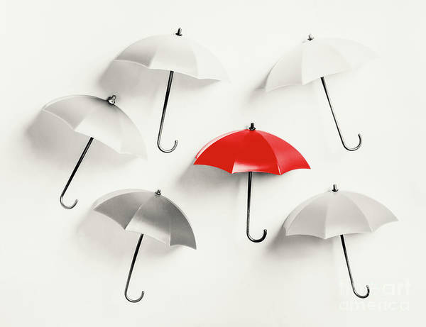 Leadership Wall Art - Photograph - Parasol Pop by Jorgo Photography - Wall Art Gallery