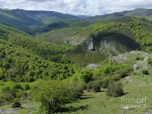 Photograph - Parc Natural De Saja-besaya by Phil Banks