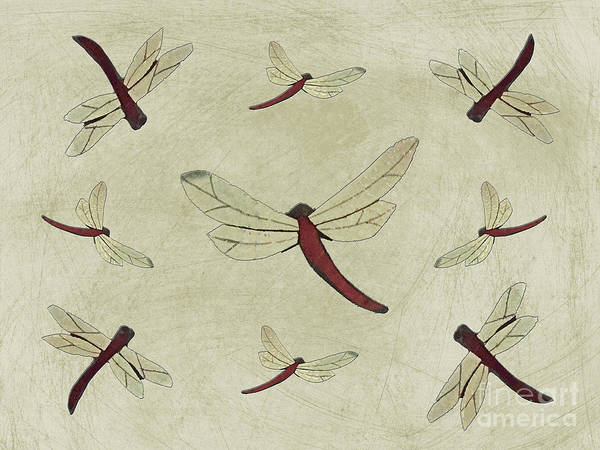 Photograph - Parchment Dragonflies by Rockin Docks