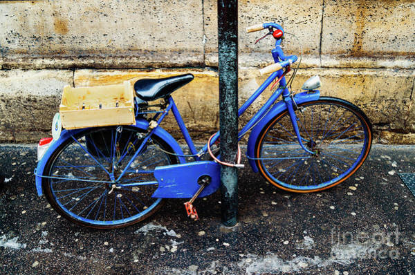 Photograph - Paris Bicycle I by Miles Whittingham