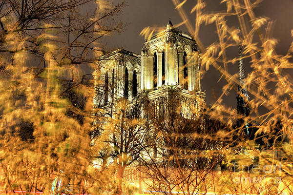 Photograph - Paris Notre Dame In The Distance  by John Rizzuto
