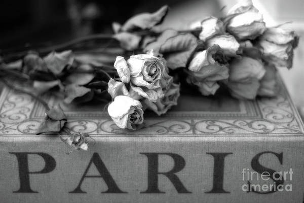 Wall Art - Photograph - Paris Roses Books Romantic Black White Roses Floral Books - Paris Roses On Paris Book  by Kathy Fornal