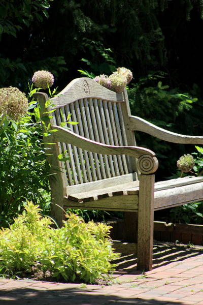 Photograph - Park Bench At The Chicago Botanical Gardens by Colleen Cornelius