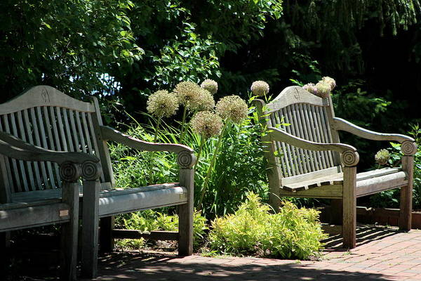 Photograph - Park Benches At Chicago Botanical Gardens by Colleen Cornelius