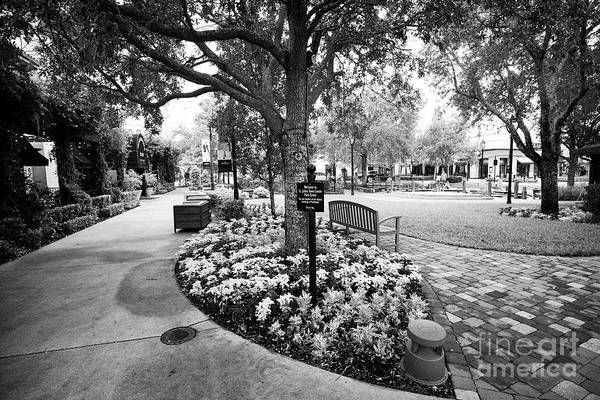 Wall Art - Photograph - park green at St Johns Town Center Jacksonville Florida USA by Joe Fox