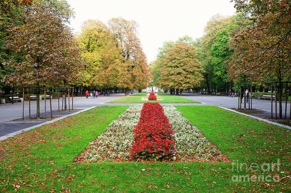 Wall Art - Photograph - Park In Warsaw by Tom Gowanlock