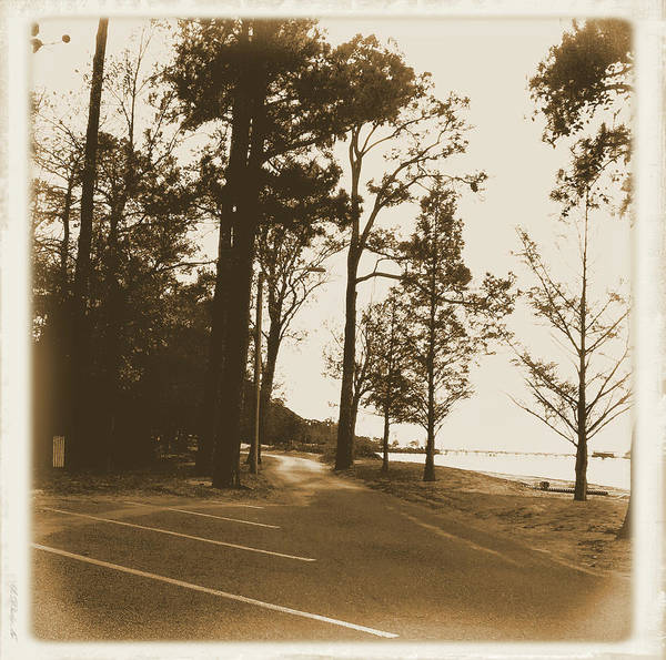 Wall Art - Digital Art - Park Road By The Beach - Sepia Tones by Marian Bell