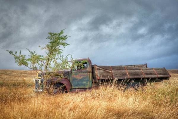 Photograph - Parked  by Harriet Feagin