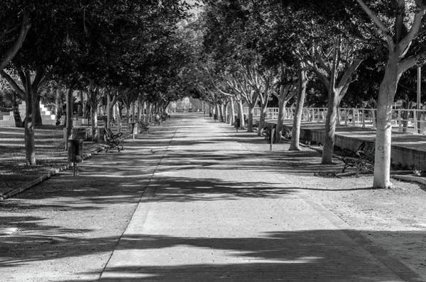 Photograph - Parque Del Oeste by Borja Robles