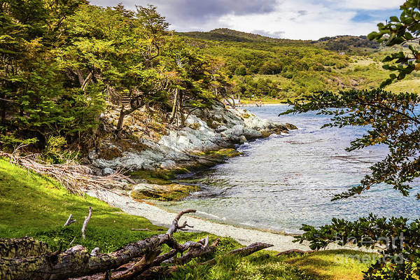 Photograph - Parque National Tierra Del Fuego, Argentina by Lyl Dil Creations