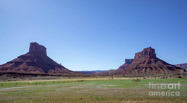 Photograph - Parriott Mesa And The Castleton Tower Mesa Rise Up Over Fields A by William Kuta