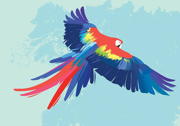 Parrot Digital Art - Parrot Flying by Rubens Lp
