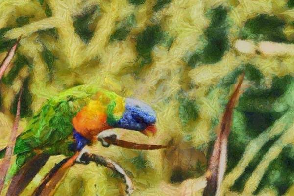 Wall Art - Painting - Parrot Paradise by Harry Warrick