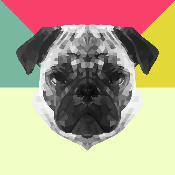 Wall Art - Digital Art - Party Pug by Naxart Studio
