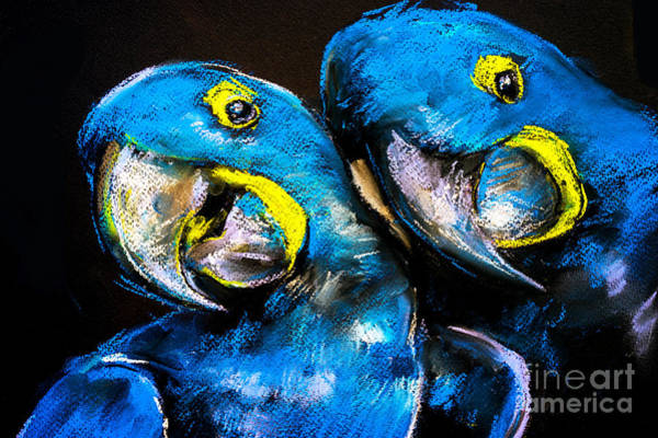 Wall Art - Digital Art - Pastel Painting Of A Blue Parrots On A by Ivailo Nikolov