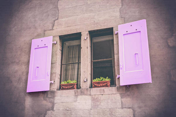 Wall Art - Photograph - Pastel Pink Shutters Carouge Geneva  by Carol Japp