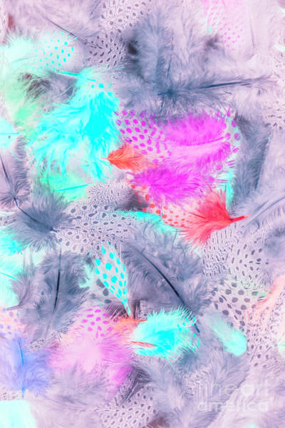 Wall Art - Photograph - Pastel Plumes by Jorgo Photography - Wall Art Gallery