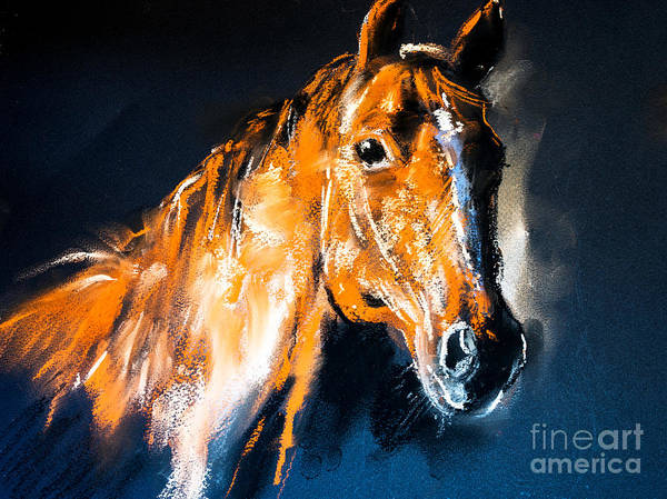 Wall Art - Digital Art - Pastel Portrait Of A Brown Horse On A by Ivailo Nikolov