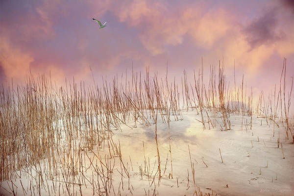 Photograph - Pastel Sky by John Rivera