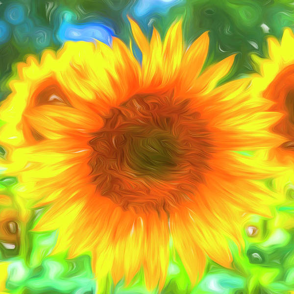 Wall Art - Photograph - Pastel Sunflower Art by David Pyatt
