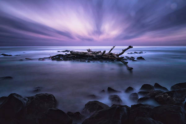 Photograph - Pastel Tranquility by Jason Roberts
