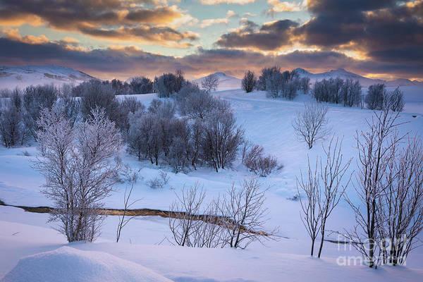Wall Art - Photograph - Pastoral Lofoten Winter by Inge Johnsson