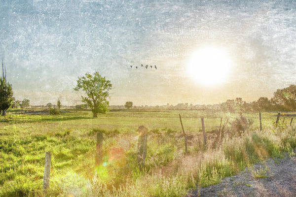 Digital Art - Pasture Sunrise by Ramona Murdock