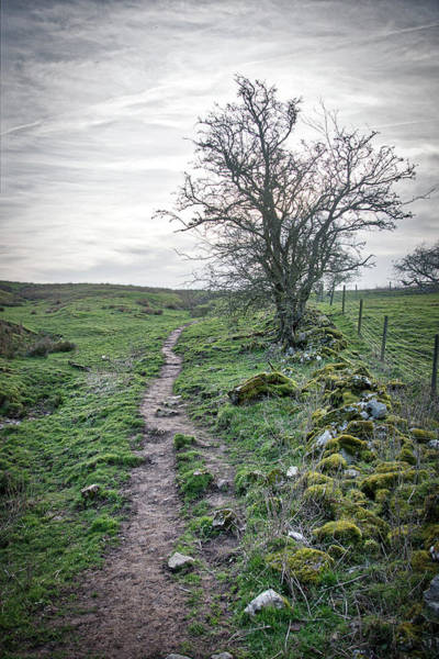 Photograph - Path Around Thorpe Cloud by Scott Lyons