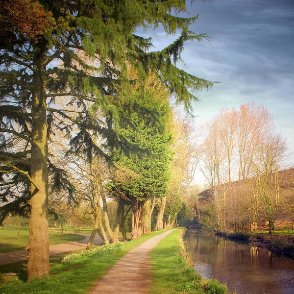 Cardiff Photograph - Path Besides Canal In Bute Park by Christiana Stawski