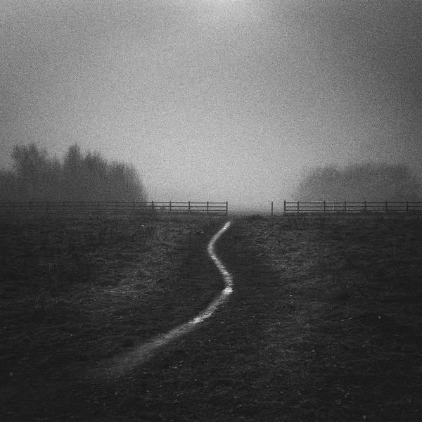 Nottinghamshire Photograph - Path In Mist by Doug Chinnery
