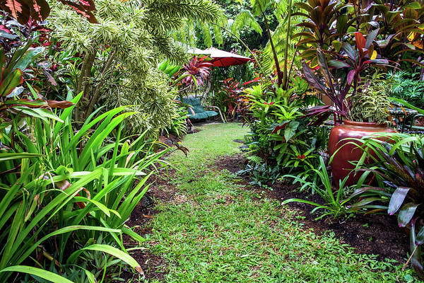 Patio Photograph - Path In The Garden by Julie Thurston