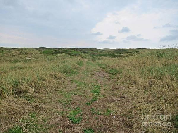 Photograph - Path Near De Mokbaai On Texel by Chani Demuijlder
