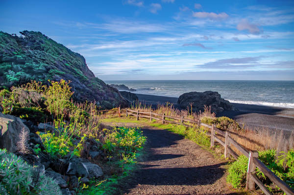 Photograph - Path To Black Sands Beach - Shelter Cove California by Bill Cannon