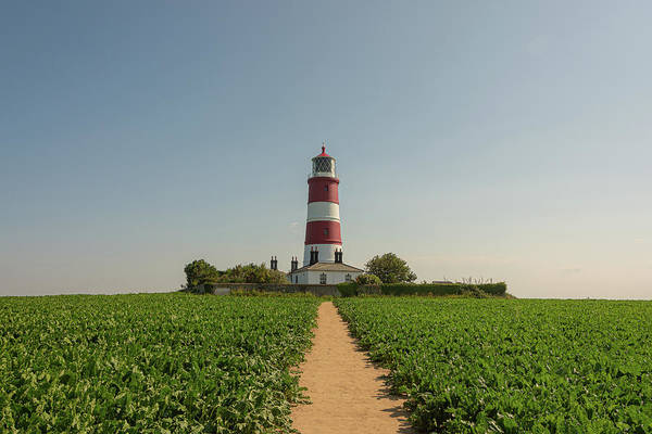 Photograph - Path To Happisburgh Lighthouse by Scott Lyons