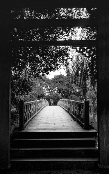 Photograph - Path To Meditation by Silvia Marcoschamer