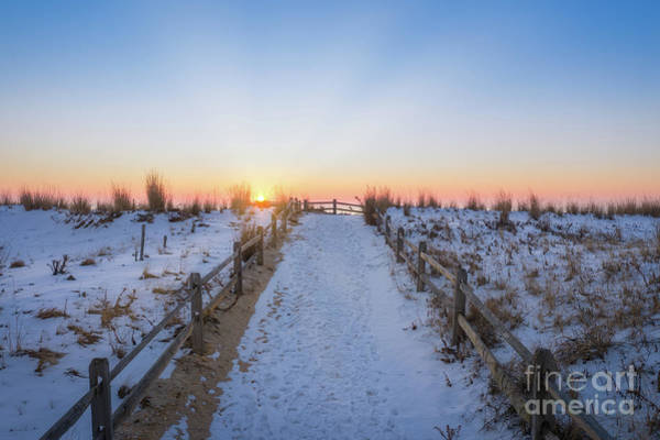 Wall Art - Photograph - Path To Sunshine  by Michael Ver Sprill