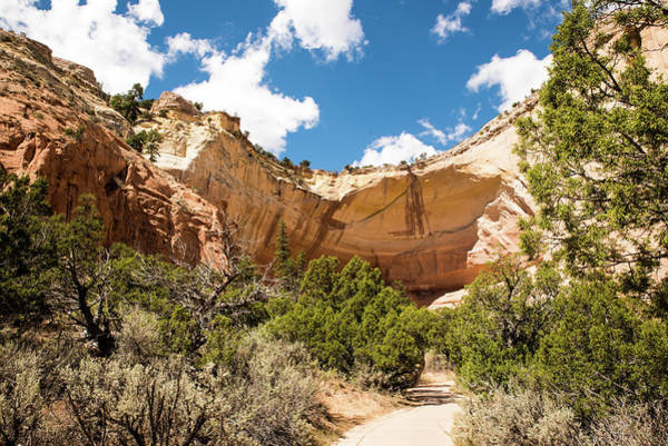 Photograph - Path To The Amphitheater by Tom Cochran