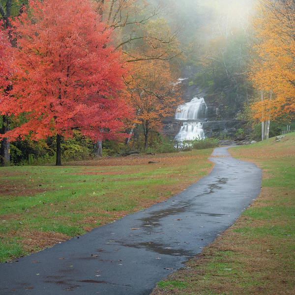 Photograph - Path To The Falls Square by Bill Wakeley