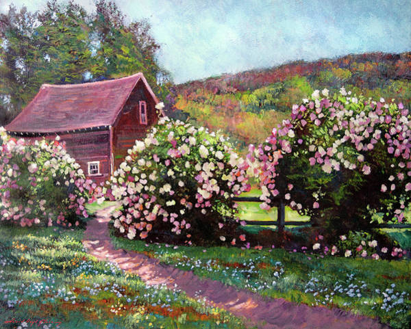 Painting - Path To The Old Red Barn by David Lloyd Glover
