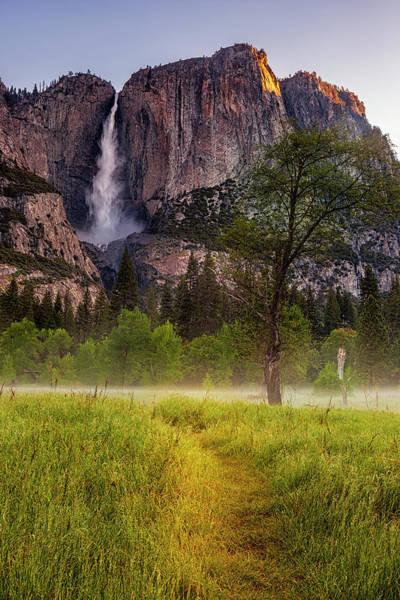Wall Art - Photograph - Path To Yosemite Falls by Andrew Soundarajan