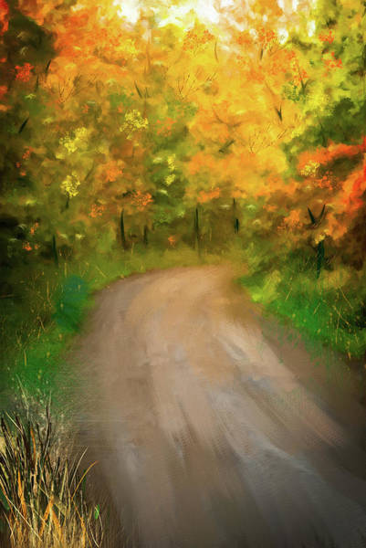 Wall Art - Digital Art - Path Traveled To Autumn by Mary Timman