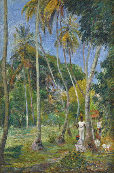Wall Art - Painting - Path Under The Palms by Paul Gauguin