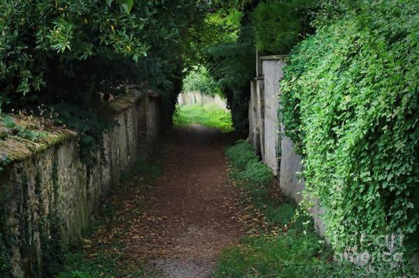 Photograph - Pathway In Hautvillers France by Luther Fine Art