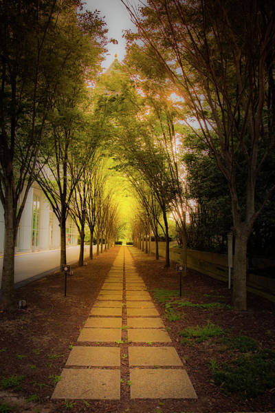 Photograph - Pathway by Kenny Thomas