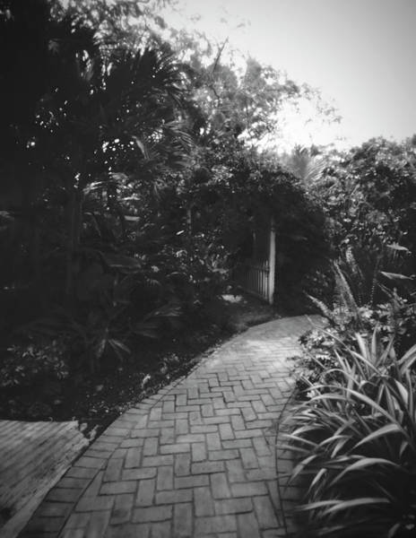 Photograph - Pathway-ph041904 by Rudy Umans