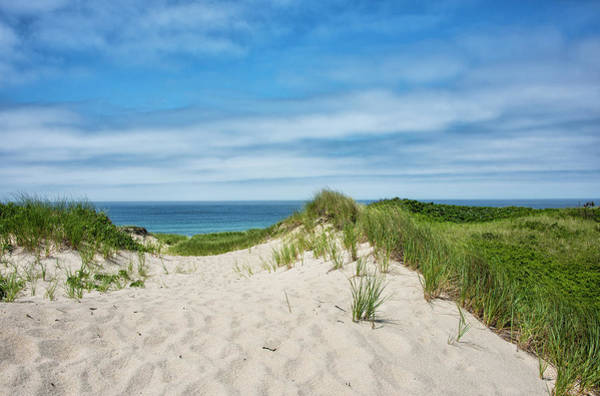 Wall Art - Photograph - Pathway To The Beach On Martha's Vineyard by Brendan Reals