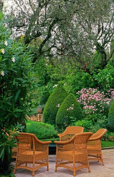 Vertical Garden Photograph - Patio Seating Area by Richard Felber