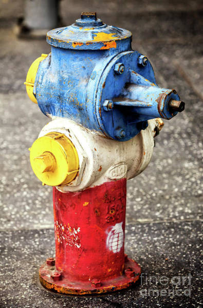 Photograph - Patriotic Hollywood Boulevard Hydrant by John Rizzuto