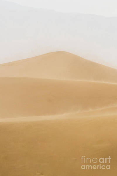 Photograph - Patterned Desert by Dheeraj Mutha