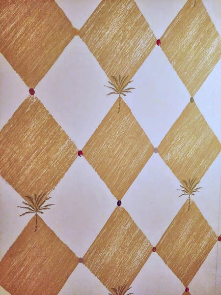 Photograph - Patterned Paragons by JAMART Photography
